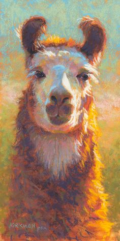 """Lucy""  (pastel, 12x6 inches)  click here to bid or buy:http://www.dailypaintworks.com/buy/auction/625291  Day 22 in my 30-Paintings-in-30-Days of November. ...Thought it was time for a llama.  See progress shots on my blog: https://ritakirkman.blogspot.com/2016/11/day-22-lucy.html"