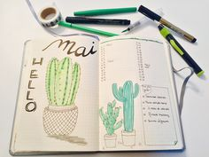 Bullet journal - mois de mai - monthly - cactus