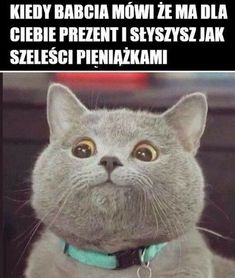 Polish Memes, Weekend Humor, Aesthetic Memes, True Memes, Hilarious, Funny, Haha, Pokemon, Kawaii