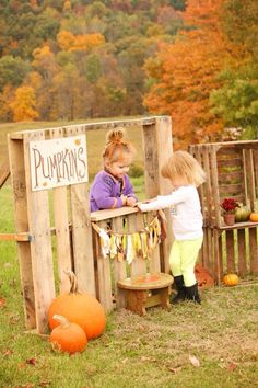 Fall mini session, pumpkin stand, diy pallet, autumn mini