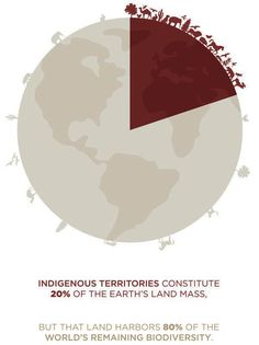 According to the United Nations, there are approximately 400 million Indigenous people worldwide, making up more than distinct tribes.