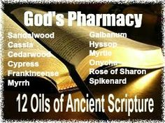 The 12 Oils of Ancient Scripture - Sherry A Phillips
