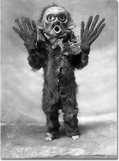 "Koskimo native -- the costume is part of a ceremony, and the creature depicted is a Hami, which literally translates to ""dangerous thing.""  Read more: http://www.cracked.com/article_20070_13-old-timey-photos-that-prove-history-was-haunted.html#ixzz2jH3XK5pf"