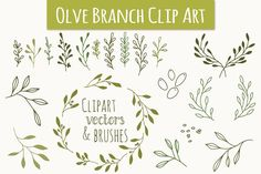 Olive Branch Clip Art & Vectors by The Pen & Brush on @creativemarket