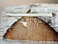 Hääräämö: Tuokkonen + ohje Wood, Crafts, Manualidades, Woodwind Instrument, Timber Wood, Trees, Handmade Crafts, Craft, Arts And Crafts
