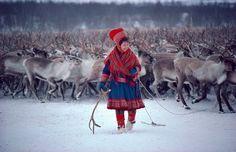Sami Reindeer Woman, Arctic Photo