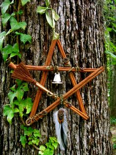 Cinnamon star - do this for protection.  Hang it above the door.