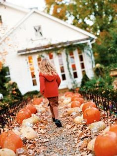 Pumpkin-Lined Trail:  A walkway lined with an eclectic assortment of pumpkins sets the tone for the Halloween decor and treats that await inside.