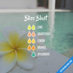 Bliss Blast - Essential Oil Diffuser Blend