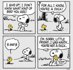 Snoopy grams