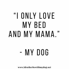 Spencer J., the best dog in whole world Dog Quotes, Animal Quotes, New Puppy, Puppy Love, Doberman Love, Crazy Dog Lady, My Only Love, Dachshund Love, Baby Dogs