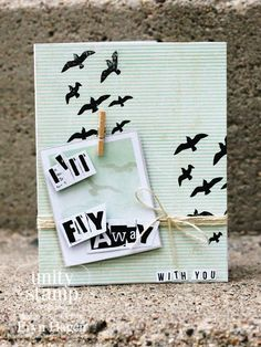 Tail Feather - from unity stamp company - find this kit at www.unitystampco.com - card created by unity design team member - Eryn Hagen