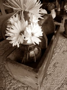 rustic in  sepia
