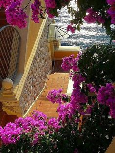 Stairs To The Sea ~ Nice - Provence - France Nice, Ville France, South Of France, Provence France, Places Around The World, Around The Worlds, Beautiful World, Beautiful Places, Paris France