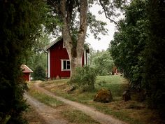 Surrounded by forests and lakes this traditional Swedish farm is a dream for nature-lovers Swedish Decor, Swedish Style, Swedish House, Forest Cabin, Scandinavian Countries, Small Lake, Natural Garden, Tiny House Plans, Maine House
