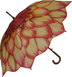 Guarda Chuvas - Umbrellas