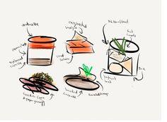 Crowne food paint