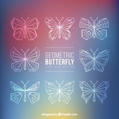 Lineal butterfly collection Free Vector