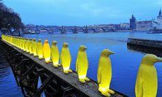 https://flic.kr/p/QVaS8S   Army of Penguin in front of the Charles Bridge in Prague (Czech Republic)   Armée de Pingouin devant le Pont Charles à Prague (République Tchèque)