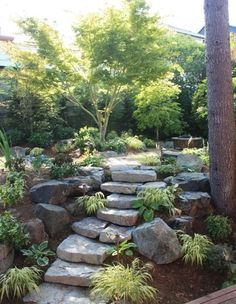 Landscape Japanese Design, Pictures, Remodel, Decor and Ideas - page 23