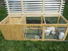 Perfect rabbit pen for raising pastured rabbits! To keep the wood from rotting rapidly I would replace the wood on the bottom with metal bars. <3 this idea!