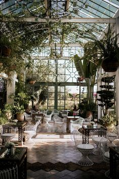 Victoria and Yoni's Colourful & Vibrant Destination Wedding in Marrakech Forest Wedding, Dream Wedding, Wedding Dress, Green Wedding Decorations, Destination Wedding, Wedding Venues, Visit Marrakech, Wedding Day Gifts, Decoration Plante