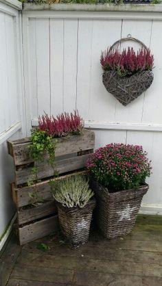Front door flower pots are the best way to show your love of plants. Front Door Planters, Rusty Garden, Best Front Doors, Paper Pot, Planting Plan, Small Plants, Flower Beds, Amazing Gardens, Container Gardening