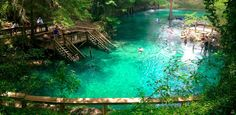 This freshwater spring bubbles up from Florida's crystalline aquifers into a 25-foot-deep stone basi... - Florida Hikes/Flickr Florida Keys, Old Florida, Florida Vacation, Florida Travel, Travel Usa, Beach Travel, Live Oak Florida, Beach Camping, Blue Springs State Park