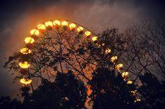 the wheel at night