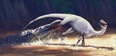 Eucoelophysis attacked by Redondasaurus.
