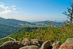 Schwarzwald / Schwarzwaldhochstrasse / Bühlerhöhe/ Falkenfelsen-Hertahütte