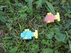 plastic beads ironed in the shape of fish - more different animals and sizes available!