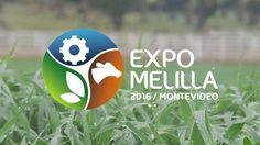Éste miércoles 6 de Abril comenzó la Expo Melilla 2016, que estará hasta el próximo domingo 10.  Es la quinta Exposición Internacional de Demostración en vivo de alimentación animal basada en las nuevas tecnologías, y es una muestra dinámica donde se ven de los avances en maquinaria para el sector d...