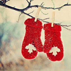 Christmas ☃ Winter Red Mittens hung from branch Merry Christmas, Winter Christmas, Christmas Time, Christmas Ornaments, Christmas Ideas, Christmas Pictures, Magical Christmas, Christmas Wishes, Christmas Crafts