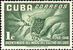 The remains of the 19th-century coffee plantations in the foothills of the Sierra Maestra are unique evidence of a pioneer form of agriculture in a difficult terrain. They throw considerable light on the economic, social, and technological history of the Caribbean and Latin American region. Cuba 1952. Bicentenary of Cuban Coffee Cultivation. Hands holding coffee-beans.
