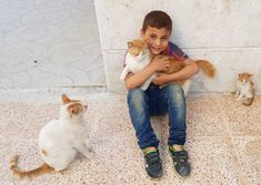 A child has a special way, of adding joy , to everyday Syrian Children, Corgi, Childhood, Joy, Cats, Animals, Corgis, Infancy, Gatos