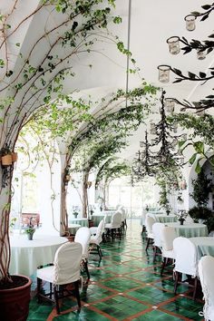 Resturant space with large indoor trees