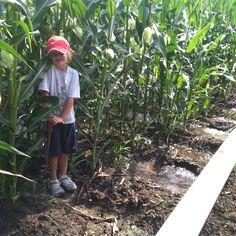 Irrigation helper.