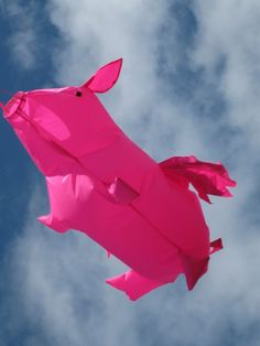 Proof positive that some piggies really do fly! :) #cute #pigs #kites