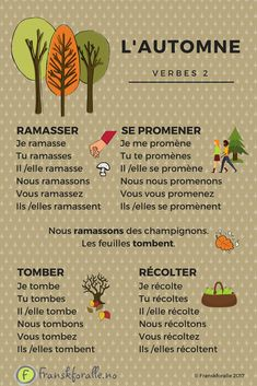 Learn new verbs in French