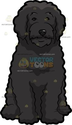 A Silent Portuguese Water Dog :  A dog with curly black coat and droopy ears sitting on the floor while looking ahead  The post A Silent Portuguese Water Dog appeared first on VectorToons.com.   #clipart #vector #cartoon