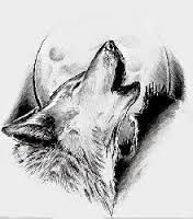 Image result for wolf v samurai tattoo designs
