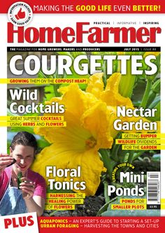 July 2015 issue 88