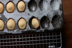 Maple Nutmeg Mini Madeleines