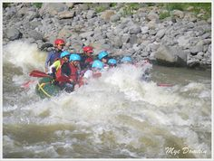 Experience the exciting adventure at CDO Whitewater Rafting Voyage. Photographs And Memories, Whitewater Rafting, Destinations, To Go, Posts, Spaces, Adventure, Photography, Travel