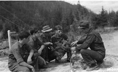 Learning the difference between fir and pine trees; CCC boys being taught the difference at the Columbia National Forest in Washington state