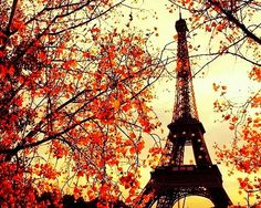 Paris in the fall. #travels #fall #nature #beauty