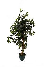 Freshen up any room with this free standing, artificial ficus tree. Planted in a basic plastic pot, this tree stands 3 feet cm Ficus Tree, Real Plants, Plastic Pots, Home Decor Online, Plant Decor, Artificial Flowers, Trees To Plant, Feng Shui, Home Furniture