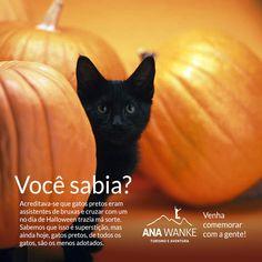 Última chance! Venha caminhar e festejar o Halloween com a gente. Informações e reservas aqui: