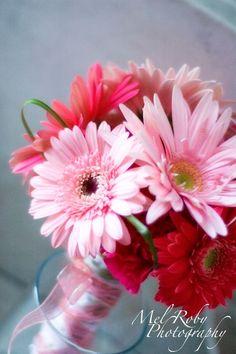 gerber daisy bouquet ideas   via summer patterson